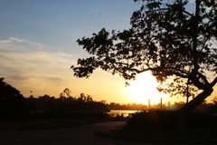 Заход солнца пруда утки Стоковые Фотографии RF