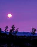 Заход солнца пурпура Kohala стоковые изображения rf