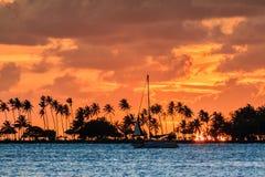 Заход солнца плавания Пуэрто-Рико стоковые фото