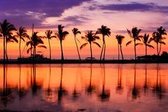 Заход солнца пляжа Гаваи - тропический ландшафт рая Стоковые Фотографии RF