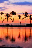 Заход солнца пляжа рая с тропическими пальмами Стоковое Фото