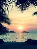 заход солнца пляжа тропический Природа Стоковая Фотография