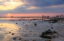 заход солнца пляжа тропический Стоковые Изображения RF