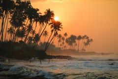 Заход солнца Пляж Koggala, Шри-Ланка Стоковые Фотографии RF
