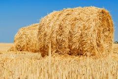 заход солнца сена травы поля предпосылки вкосую Стоковая Фотография RF