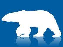 заход солнца силуэта озера ледовитого медведя канадский, котор замерли приполюсный Стоковое Фото
