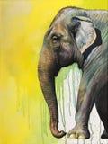 заход солнца силуэта слона предпосылки стоковое изображение