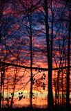 Заход солнца силуэта Стоковые Изображения RF