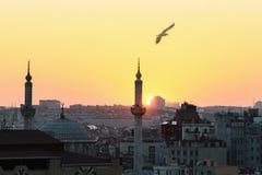 заход солнца силуэта istanbul Стоковое Изображение RF