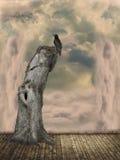 заход солнца солнца неба света ландшафта фантазии птицы волшебный Стоковые Изображения