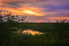 заход солнца спокойный Стоковые Фото