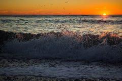 Заход солнца с волной Стоковые Фото