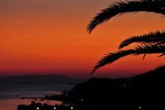 Заход солнца с листьями ладони Стоковые Изображения
