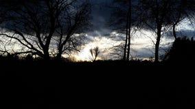 Заход солнца с контрастом Стоковые Изображения