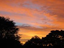 Заход солнца с красочными облаками в небе и окружающими деревьями как силуэт Стоковая Фотография