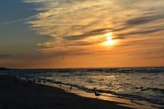 Заход солнца с птицами Стоковое Изображение RF