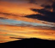 Заход солнца с птицами Стоковая Фотография RF