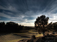 Заход солнца с silk coulds стоковое изображение rf
