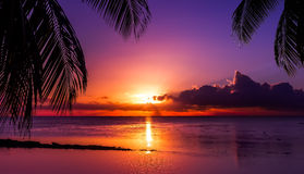 Заход солнца Таити Стоковые Изображения RF