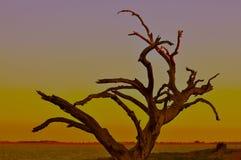 Заход солнца устанавливая над озерами Техас Стоковые Фото