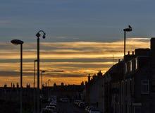 Заход солнца улицы берега Lossiemouth. Стоковые Изображения RF