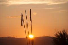 Заход солнца флага Стоковое фото RF