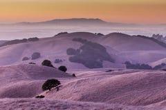 Заход солнца холмов Калифорнии золотых Стоковые Фотографии RF