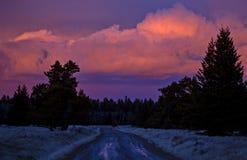 Заход солнца холмов Cypress Стоковое Изображение RF