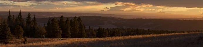 Заход солнца холмов Cypress Стоковая Фотография RF