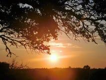 Заход солнца через романтичные глаза Стоковая Фотография
