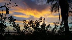 Заход солнца южная Флорида Стоковые Изображения