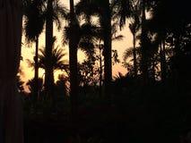 Заход солнца Юньнань Стоковое Изображение RF