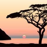 Заход солнца бесплатная иллюстрация