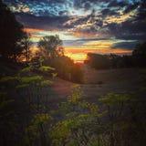заход солнца 3 Стоковые Фото