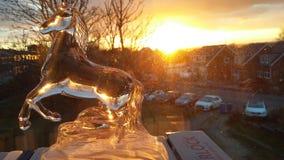 Заход солнца стоковое изображение rf