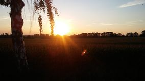 Заход солнца Стоковое Фото