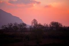 Заход солнца Bandipur Стоковые Фото