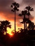 заход солнца california стоковое фото