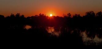 Заход солнца Camargue Стоковое Фото
