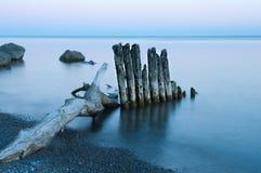 Заход солнца Driftwood Стоковое фото RF