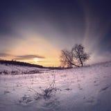 Заход солнца Galo Стоковые Изображения RF