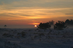 Заход солнца Hoge Veluwe стоковые изображения rf
