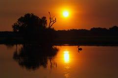 Заход солнца Kakadu Стоковые Фото