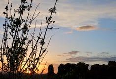 Заход солнца Moab Стоковые Фото