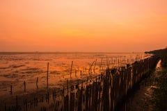 Заход солнца & Romance Стоковое Изображение