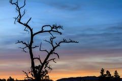 Заход солнца Sedona Стоковые Фотографии RF