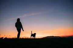 Заход солнца silhouettes женщина и собака на прогулке Стоковое Фото