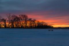 Заход солнца Snowy Стоковое Изображение RF