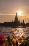 Заход солнца Wat Arun в ноче, городе Бангкока, Таиланде Стоковая Фотография RF