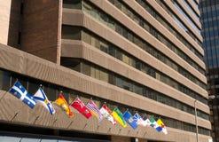 Захолустные флаги Канады Стоковые Фотографии RF